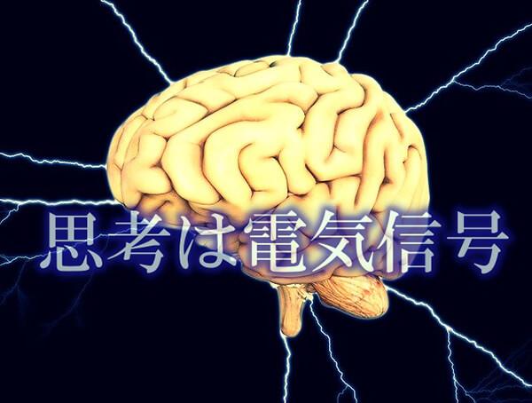 思考は電気信号